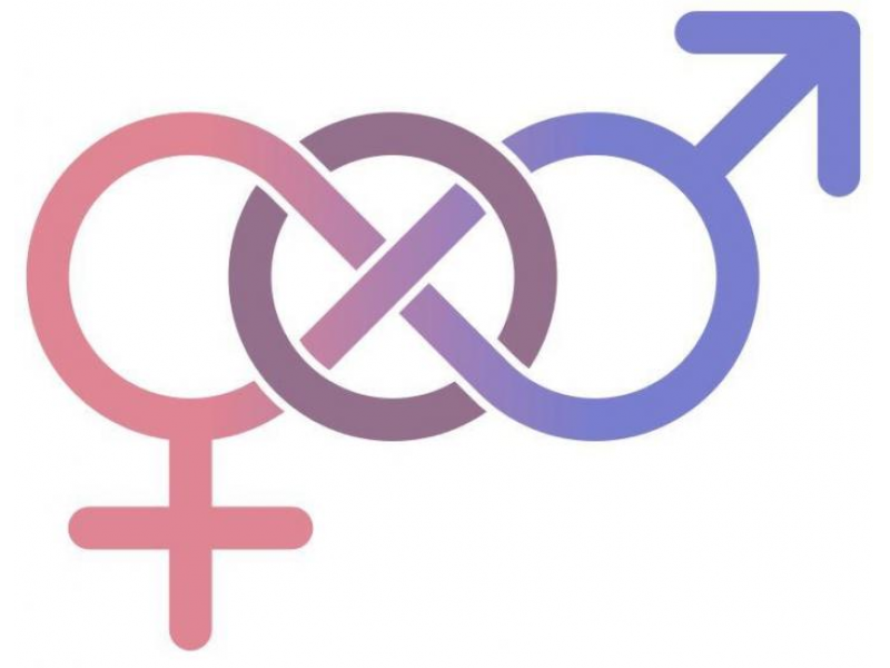 Gender sexuality and race