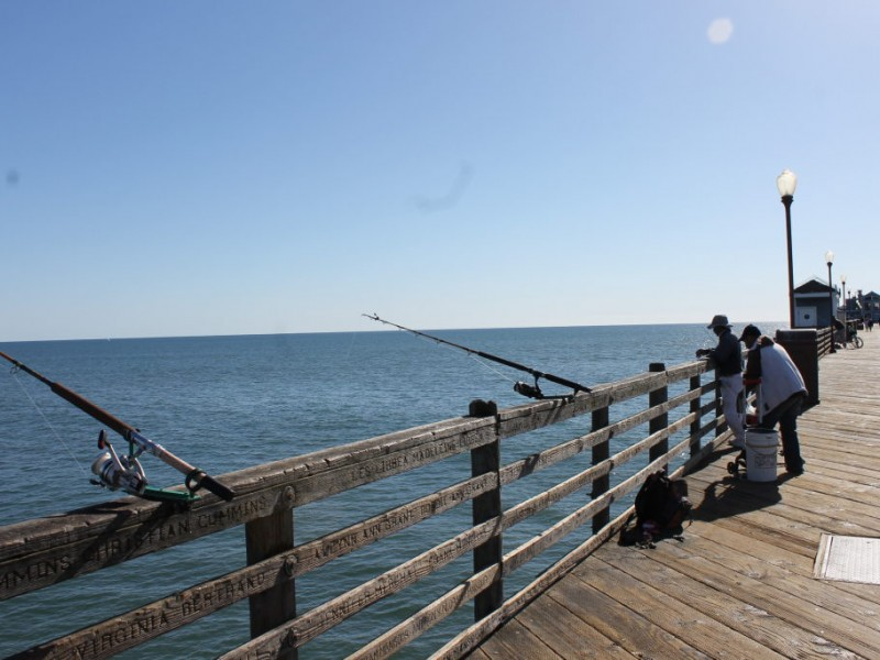 Little known facts about fishing off the oceanside pier for San diego pier fishing