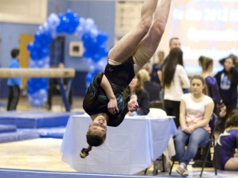 fremd wins mid suburban league gymnastics title palatine