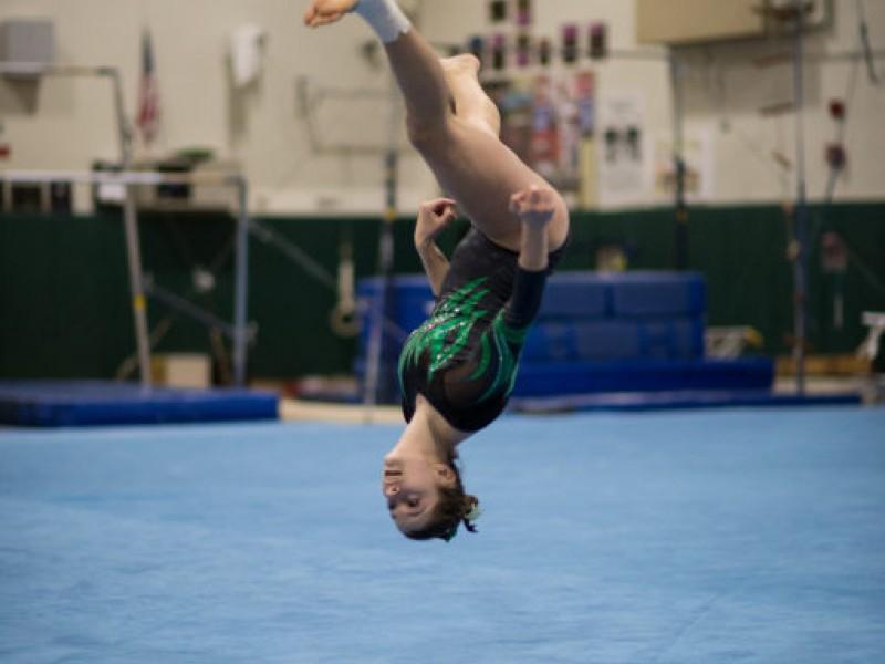 Fremd Girls Gymnastics Advance To Sectionals Palatine