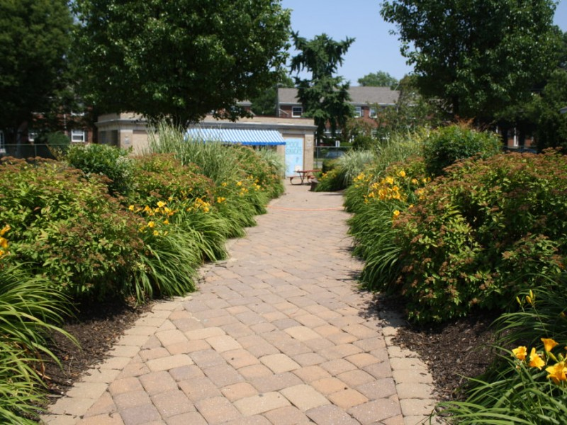 Beat Summer Heat At Roberts Pool Collingswood Nj Patch