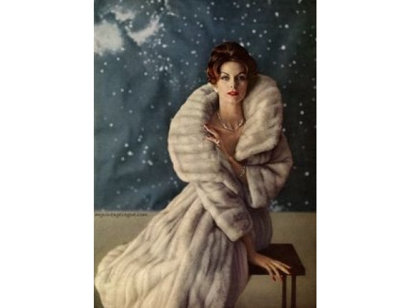 FUR COATS, WRAPS, STOLES, HATS. WANTED & FOR SALE! - Smithtown, NY ...