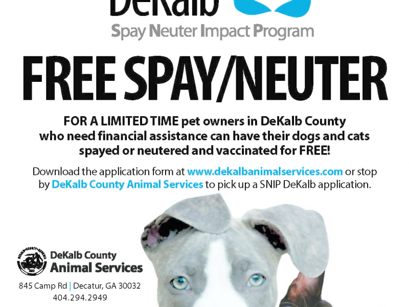 Free Dog Vaccinations In Atlanta Ga